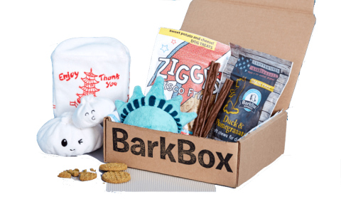 barkbox-review-featured-image